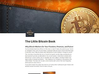 The Little Bitcoin Book